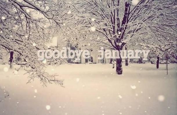 goodbye-jan