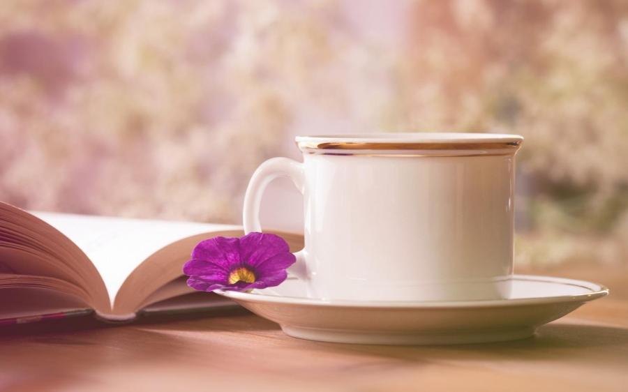 mug_tea_pair_book_flower_68255_3840x2400