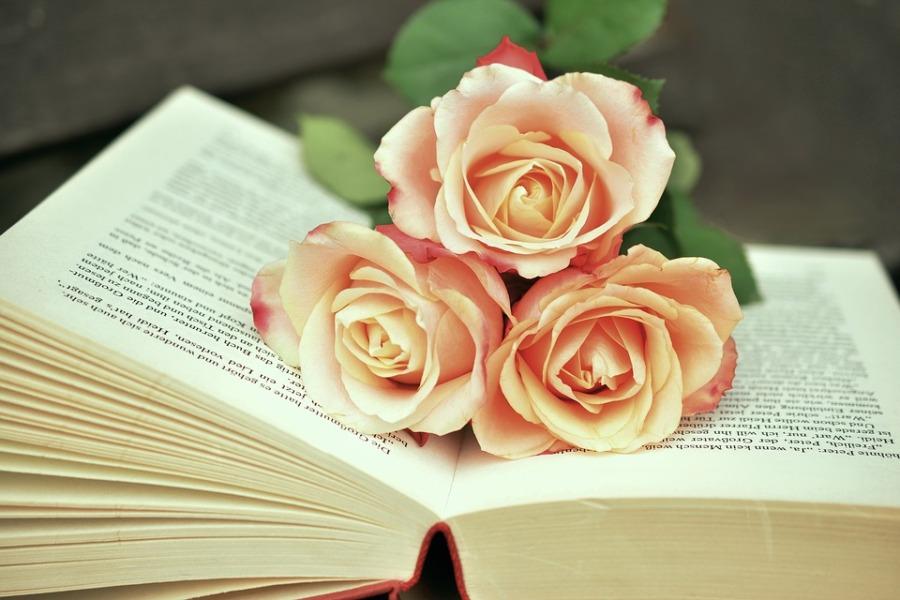 bok og roser