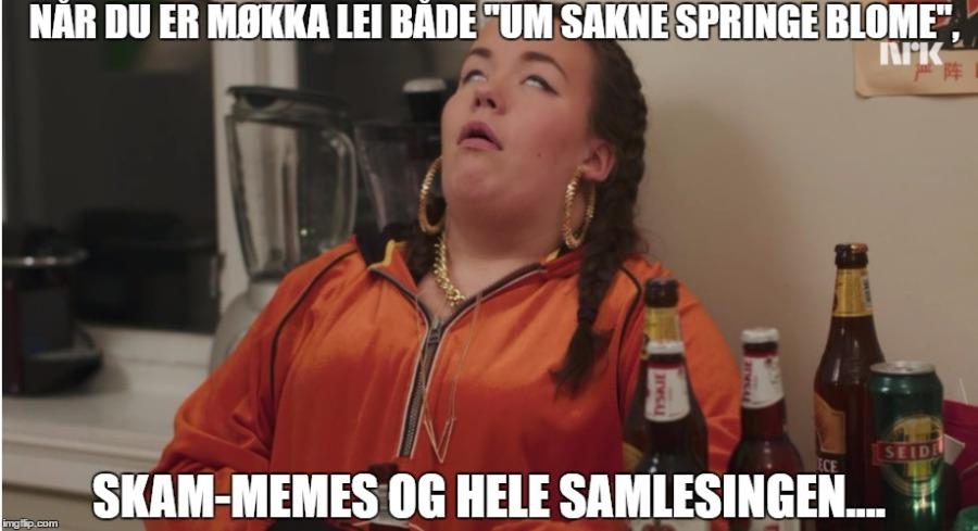 skam memes USSB