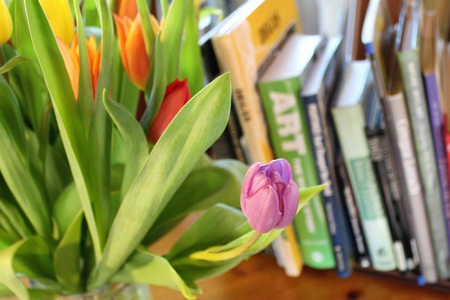tulipaner og bøker